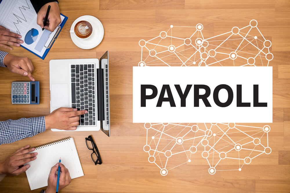PEO or payroll service
